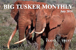 Tsavo Trust BIG TUSKER MONTHLY July 2014