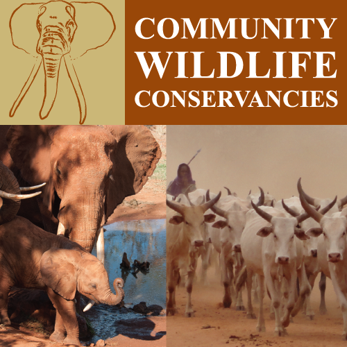 tsavo trust community wildlife conservancies stewardship programme