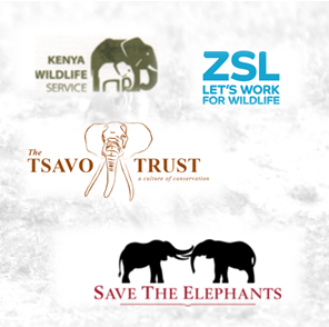 wildlife conservation header