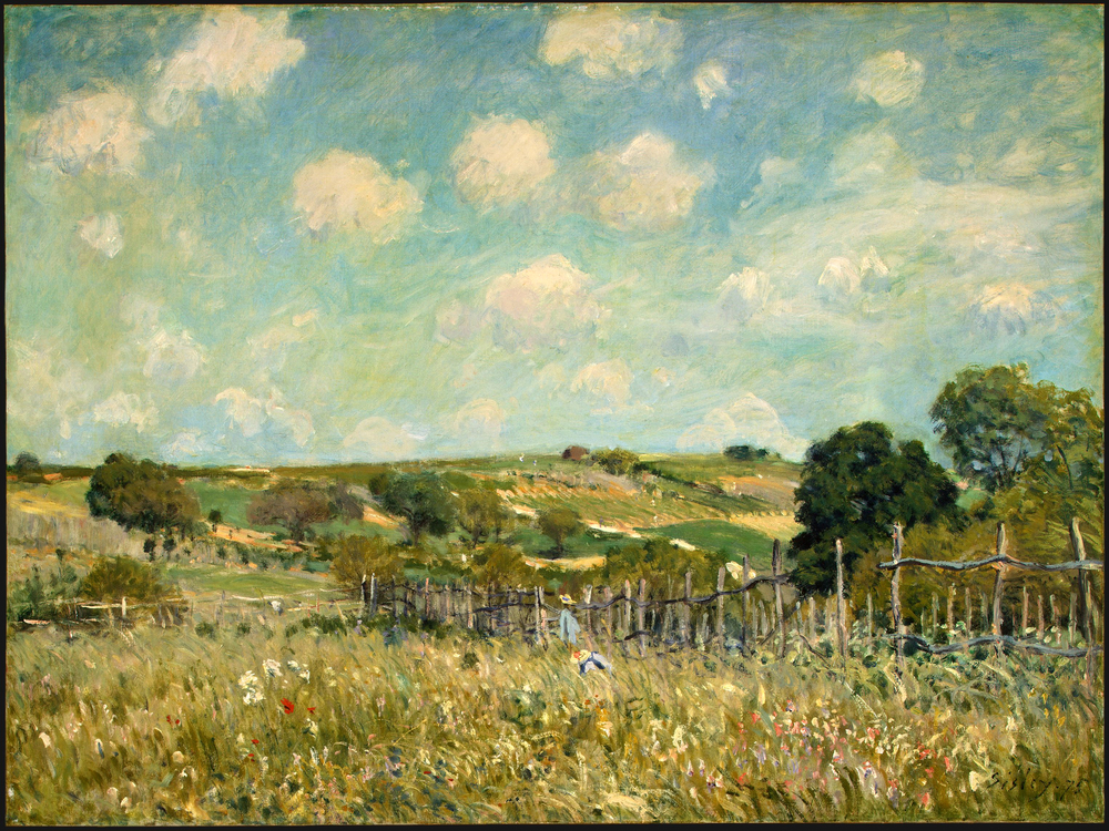 Meadow by Alfred Sisley [Public domain], via Wikimedia Commons