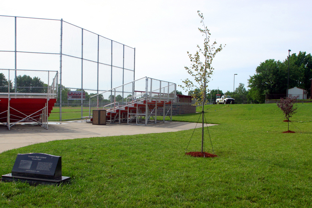 Tree by Sports Field 1(2).jpg