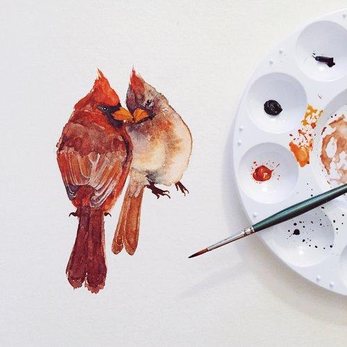 SharonTeuscher-Cardinal-Illustration.jpg