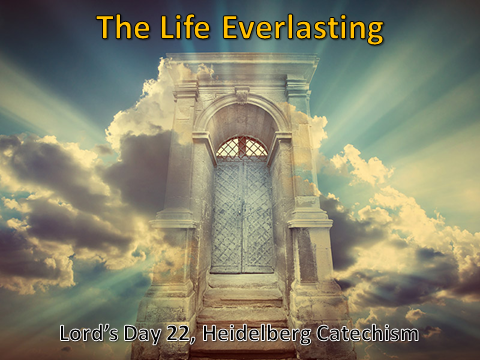 06-17-2018 The Life Everlasting.png