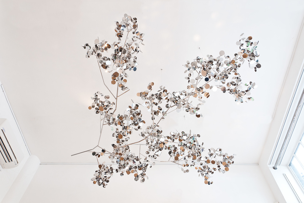 SR_Mirror Branch-5.jpg