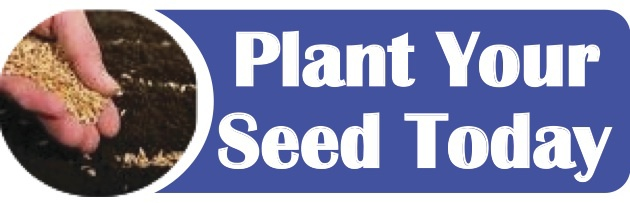 Plant Your Seed.jpg