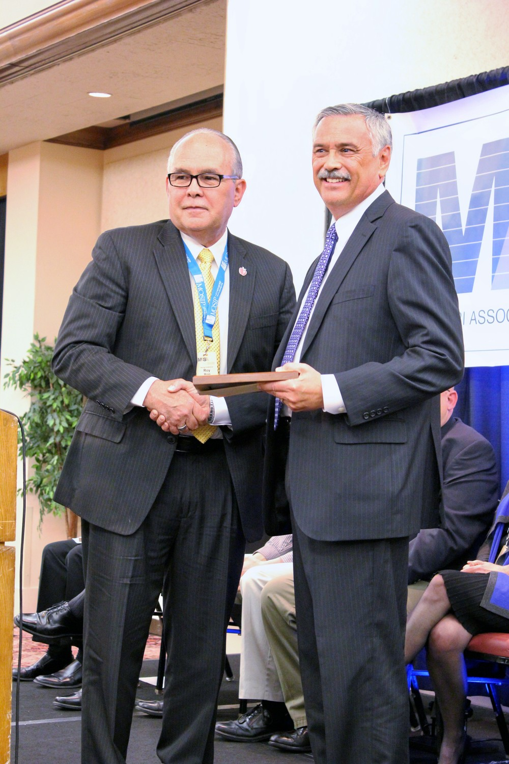 2013 MASA Friend of Education Award - MKautz.JPG