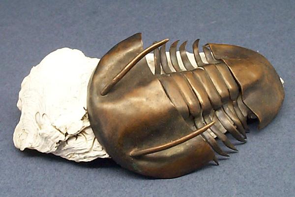 trilobyte.jpg