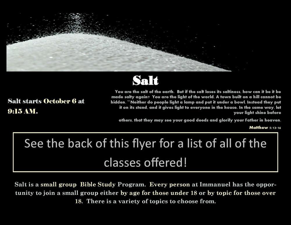 salt poster landscape_Page_1.jpg