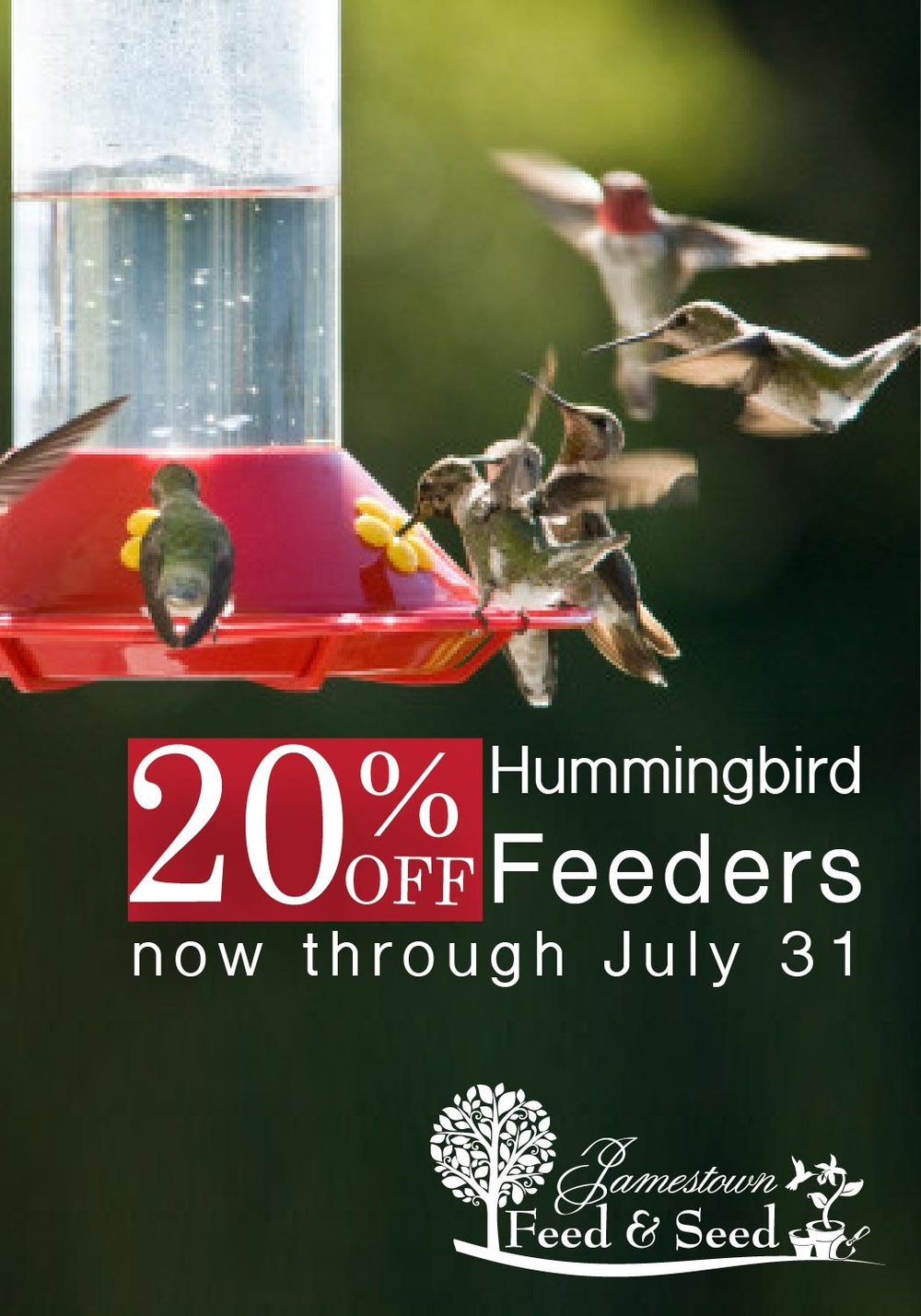hummingbird feeders sale-01.jpg
