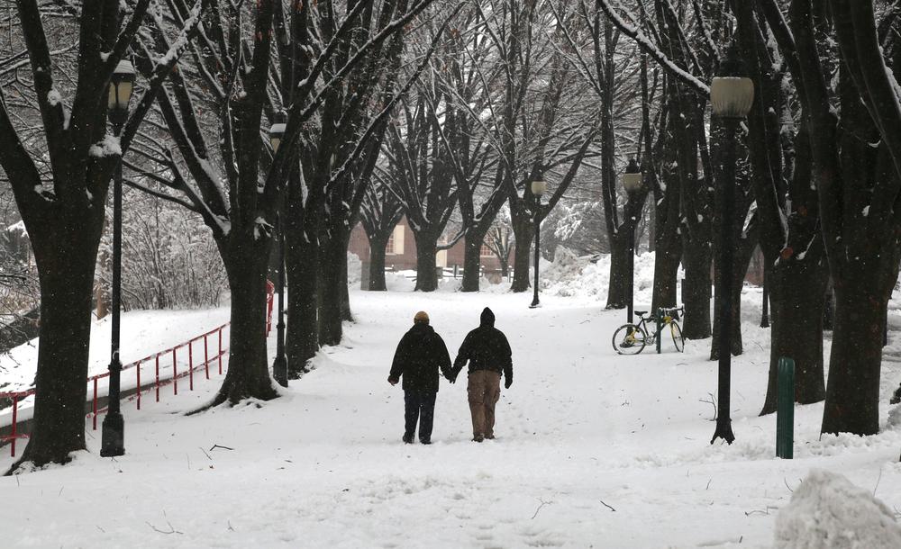 0203_NWS_SP-snowfall_02.jpg