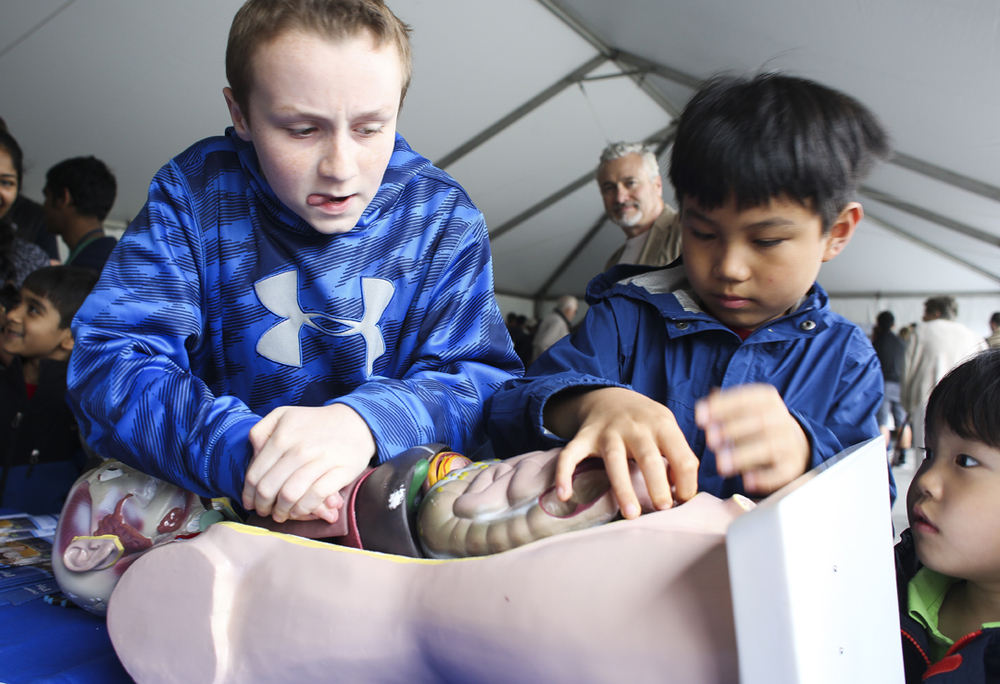 From left, Newport News resident Brady Vincent, 11 and Virginia Beach Dian Chen, 10 as Tuo Chen, 4, watches them place body parts back into a demonstration on proton therapy at the Jefferson Lab Open House in Newport News, Saturday, April 30, 2016. (Sonya Paclob / Special to the Daily Press)