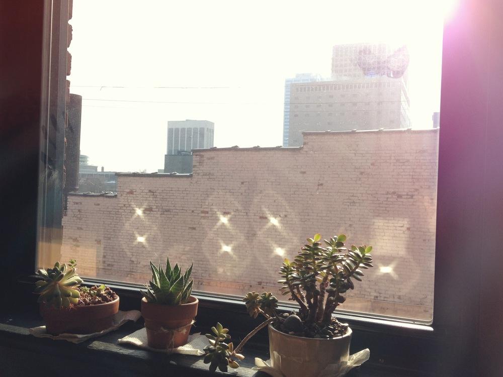 009  -  09 january 2013