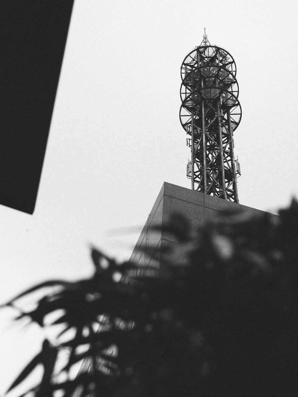 Tokyo Tower Tokyo Japan  3.25.2017