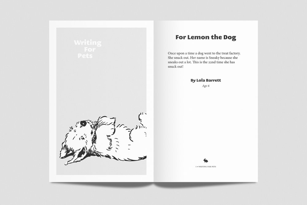 Writing For Pets - Chapbook / 2013