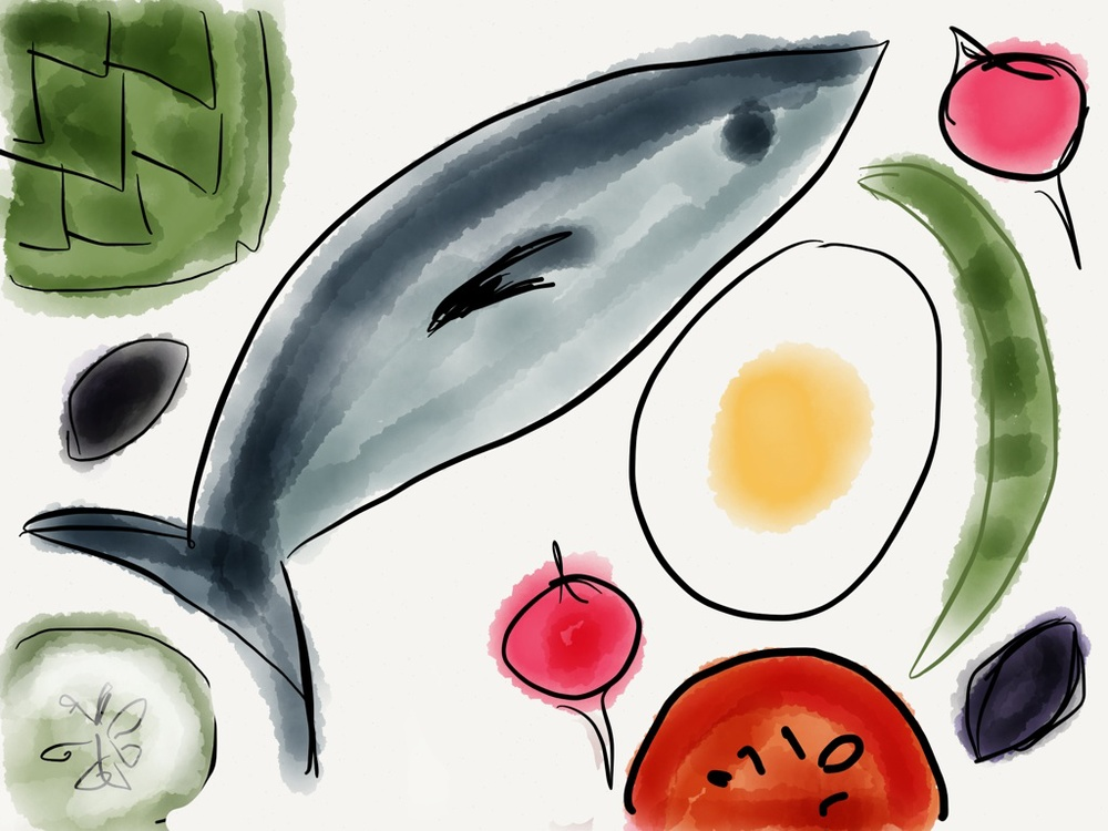 Salade Niçoise. Sketch