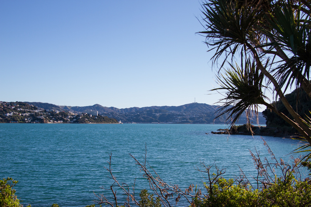 Wellington_NZ_35.jpg