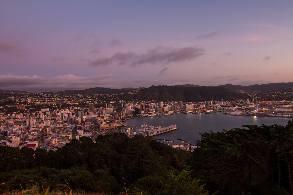 Wellington_NZ_39.jpg