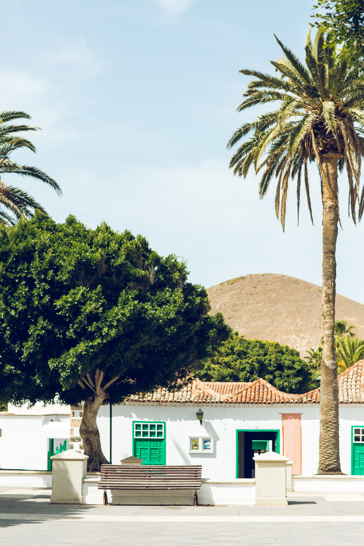 Lanzarote March 16-9.jpg