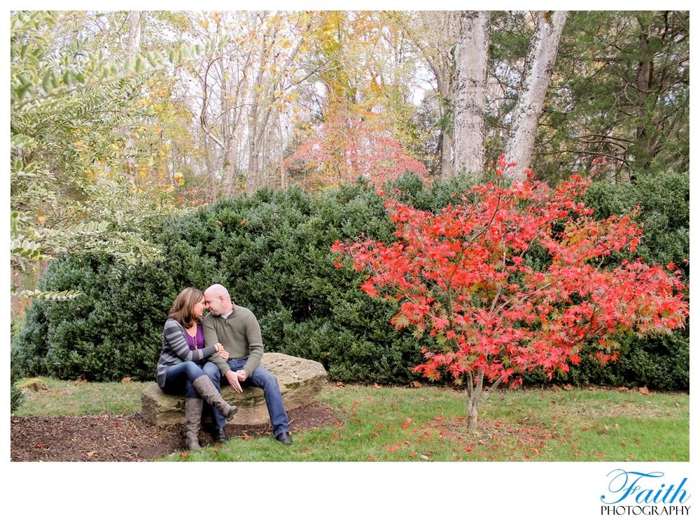 2012-11-26_005.jpg