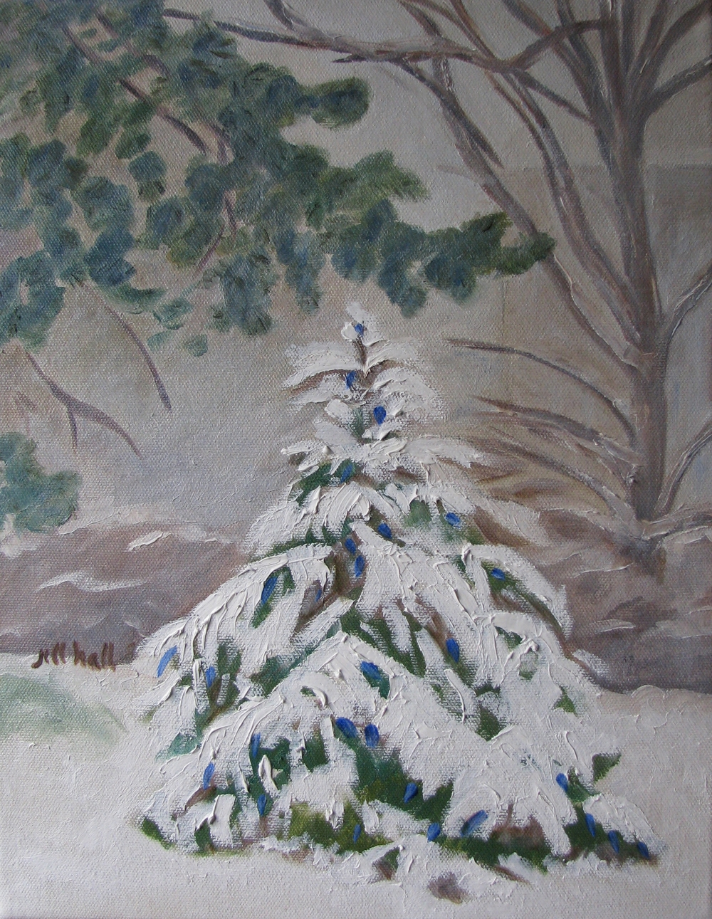 Christmas Tree in Snow - 11x14