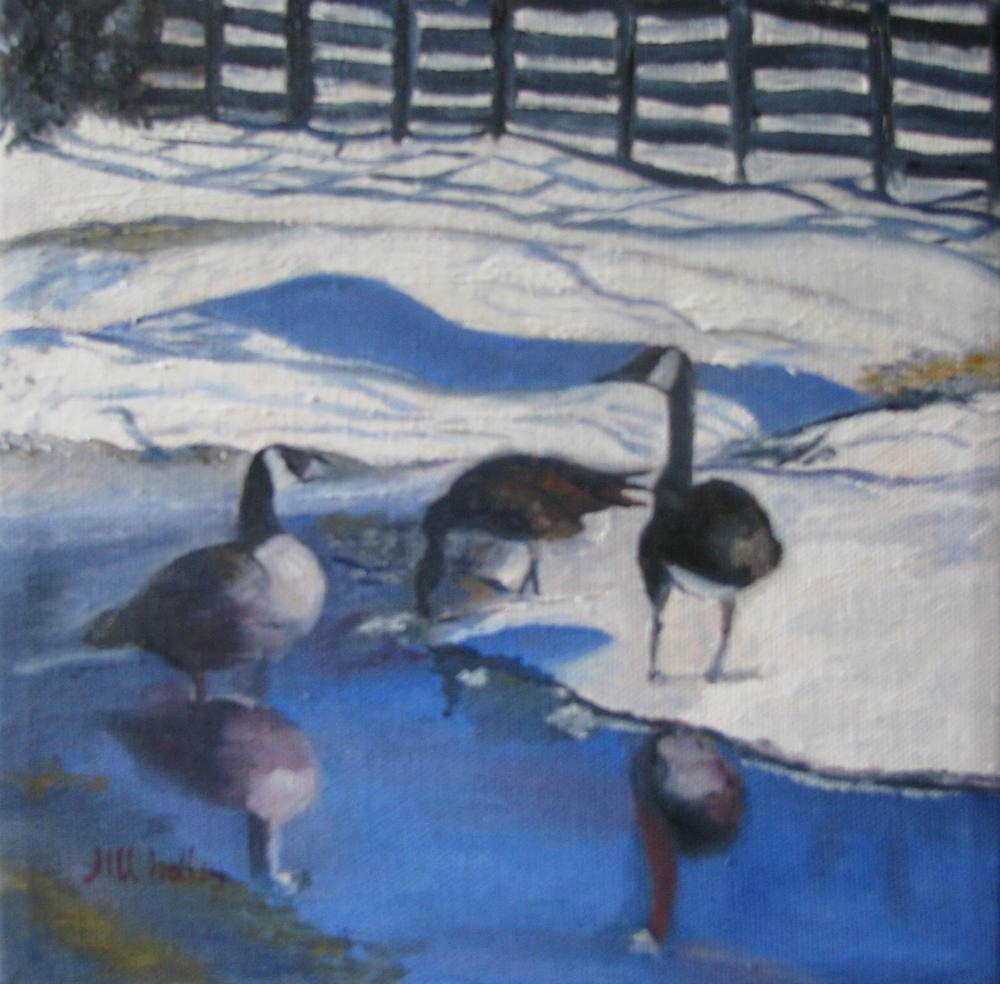 Anchorage Geese - 8x8