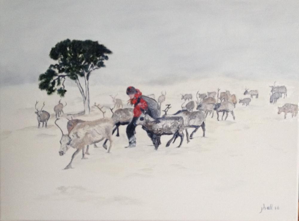 Cairngorm Reindeer - 12 X 16
