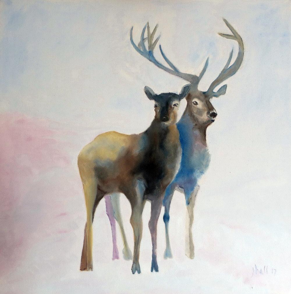Two Deer - 16 X 16