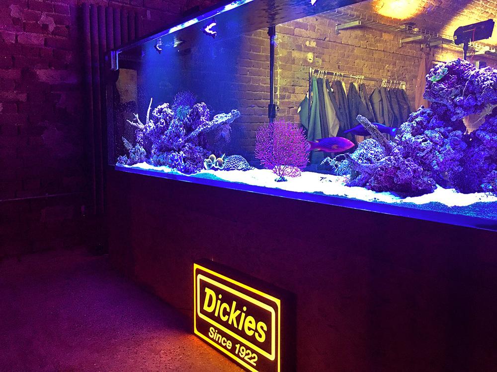 Dickies Tank3.jpg