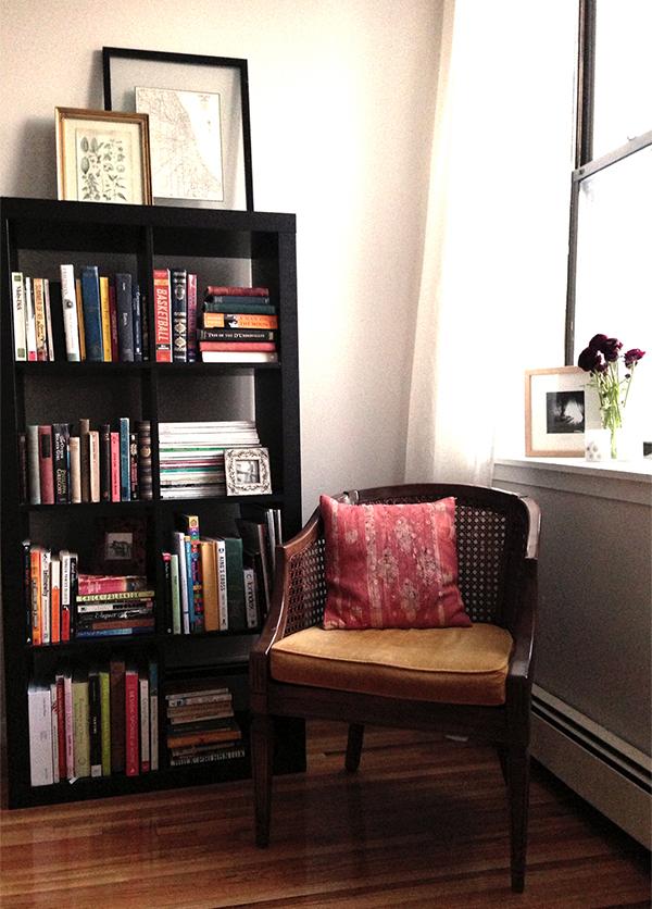 Emily's living room bookshelf