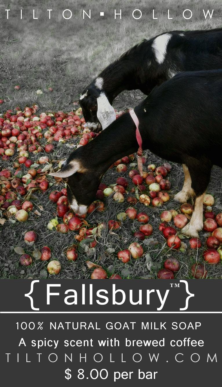 fallFallsbury.jpg