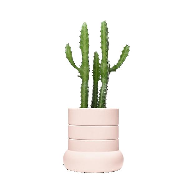 Tall Plant Pot
