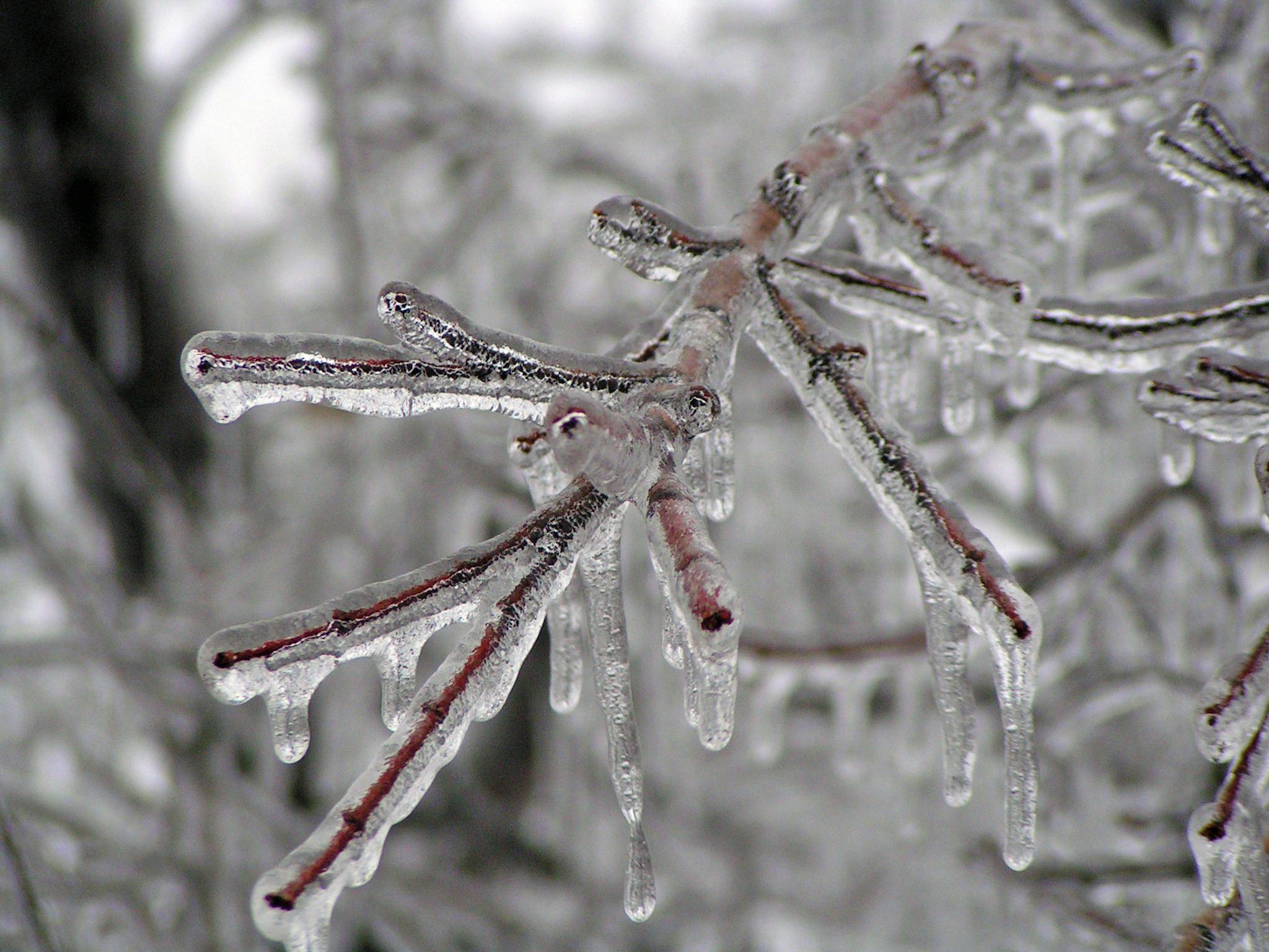 ice_storm_kansas