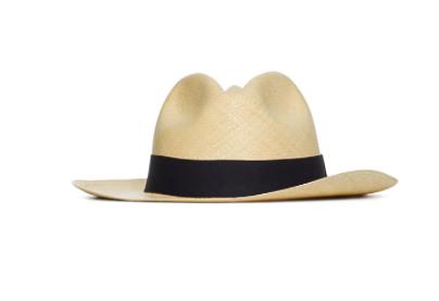 aritzia-hat.png