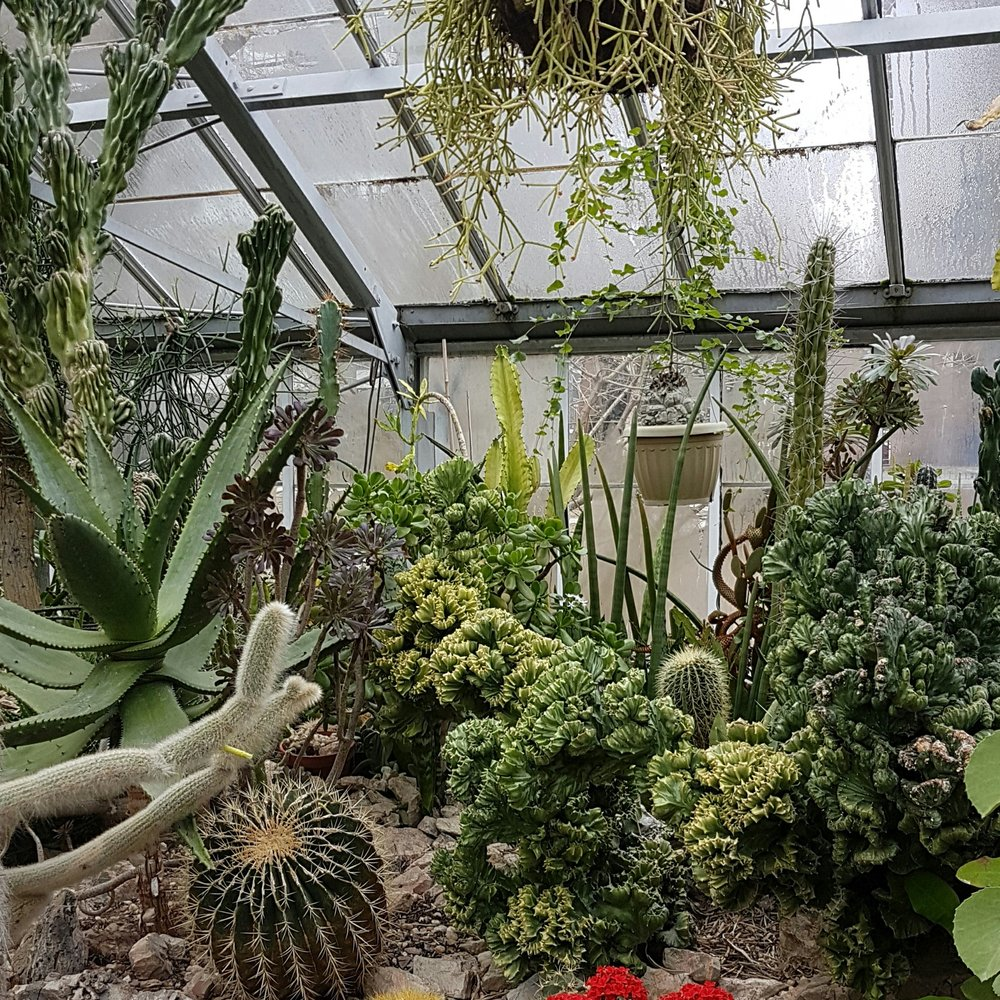 This desertscape is just one of the many gardens in the conservatory.