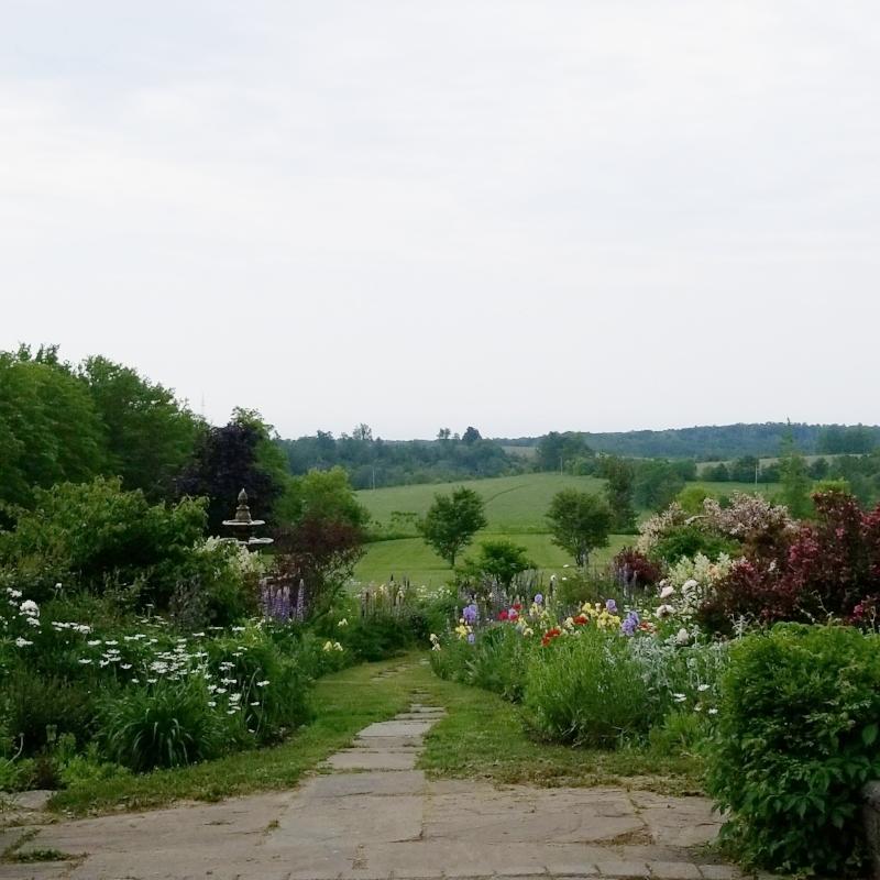 ste-annes-gardens 2.JPG