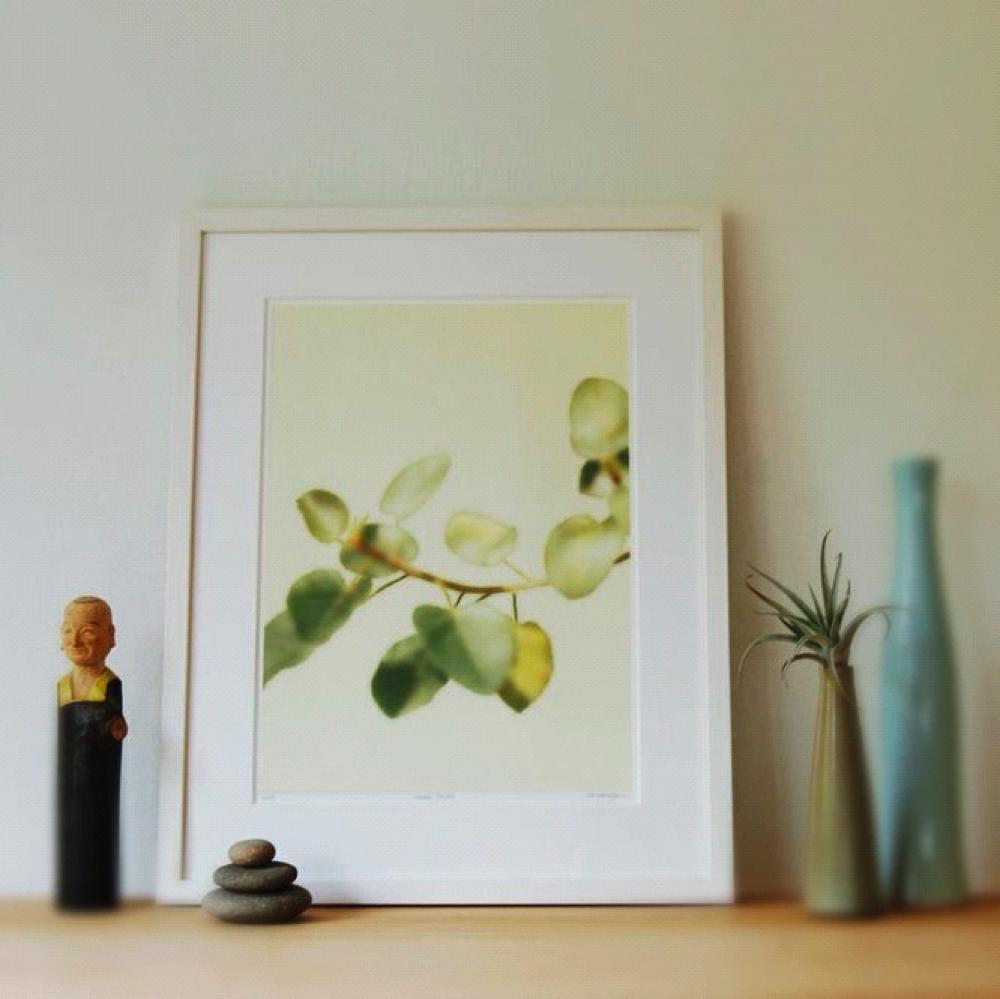 Botanical print by Herman Yu