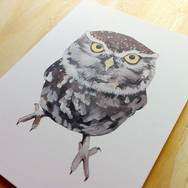 This Burrow Owl card by Irene Akio is also available in a larger framed print for $85