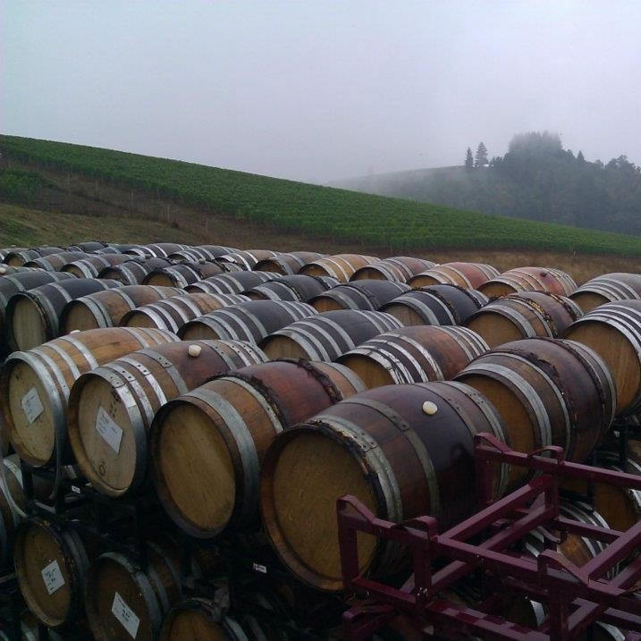 elliot bay wines.jpg