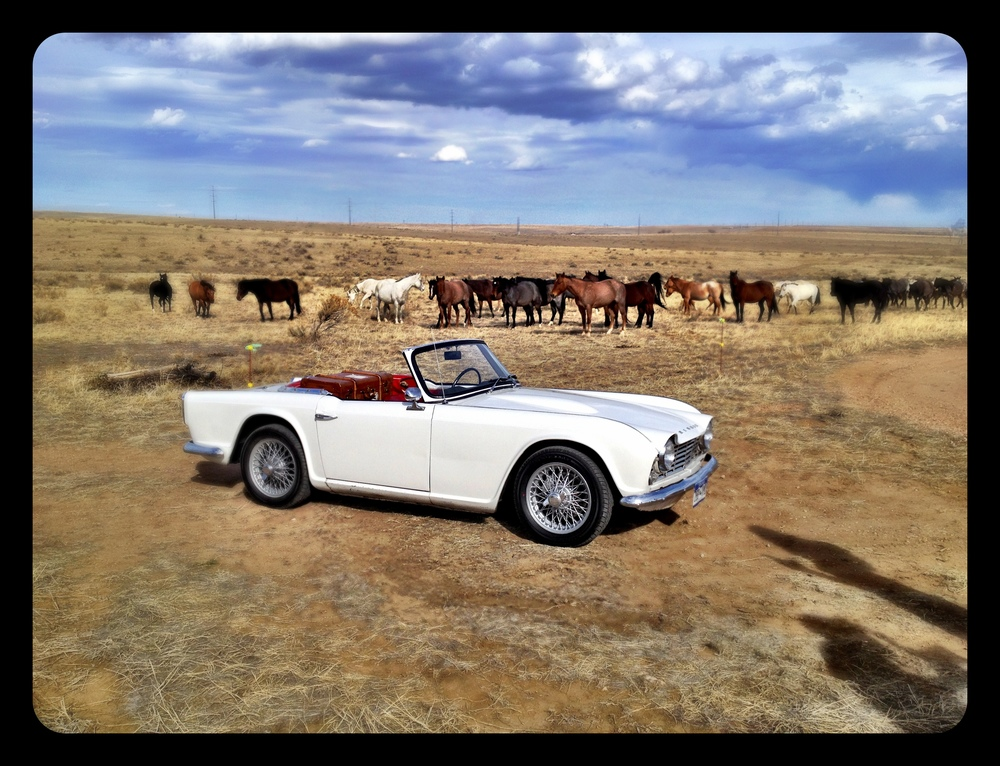 So now the props are an awesome convertible {planned, thanks to Nate!} and a herd of incredible horses {no way they could have been planned!}.