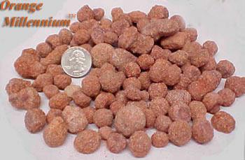 Natural Orange Millennium Nodules