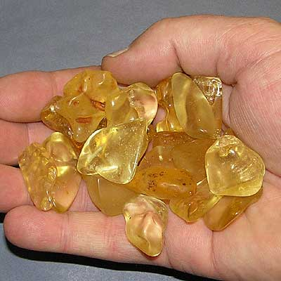 Amber Example