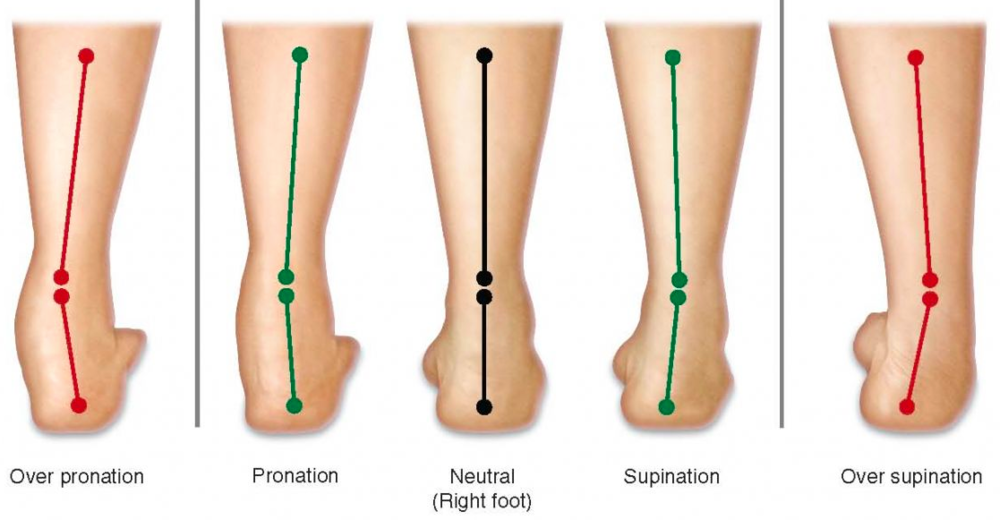 Heel To Toe Walk >> Calf Muscle Tightness, Achilles Tendon Length and Lower Leg Injury — Mountain Peak Fitness