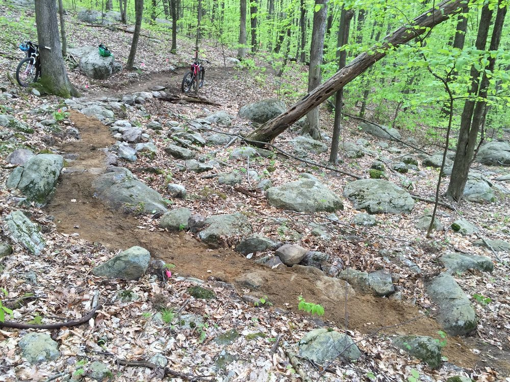 A new section of trail in Ringwood State Park. Photo: Ellen White