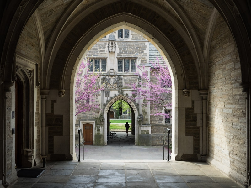 Princeton University-4.jpg