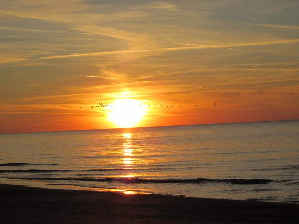 "A flock of beautiful birds cross the sunset. On Friday afternoon, April 7, we (Ela and Bogdan) joined all Boulder runners in the tribute to Micah. The sandy Boiler Beach of Lake Huron was the place to say ""thank you and good-bye"" to Caballo Blanco during our one-hour run. The day ended with a spectacular sunset. Keep on running, Caballo! - Bogdan"
