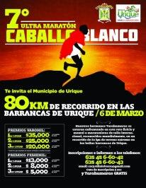 2011 CCUM Poster