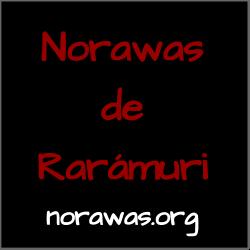 Norawas.org - Friends of the Raramuri nonprofit organization.