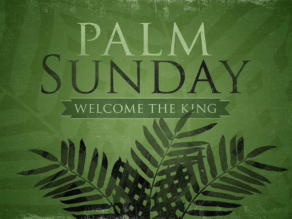 palm sunday graphic sized.jpg