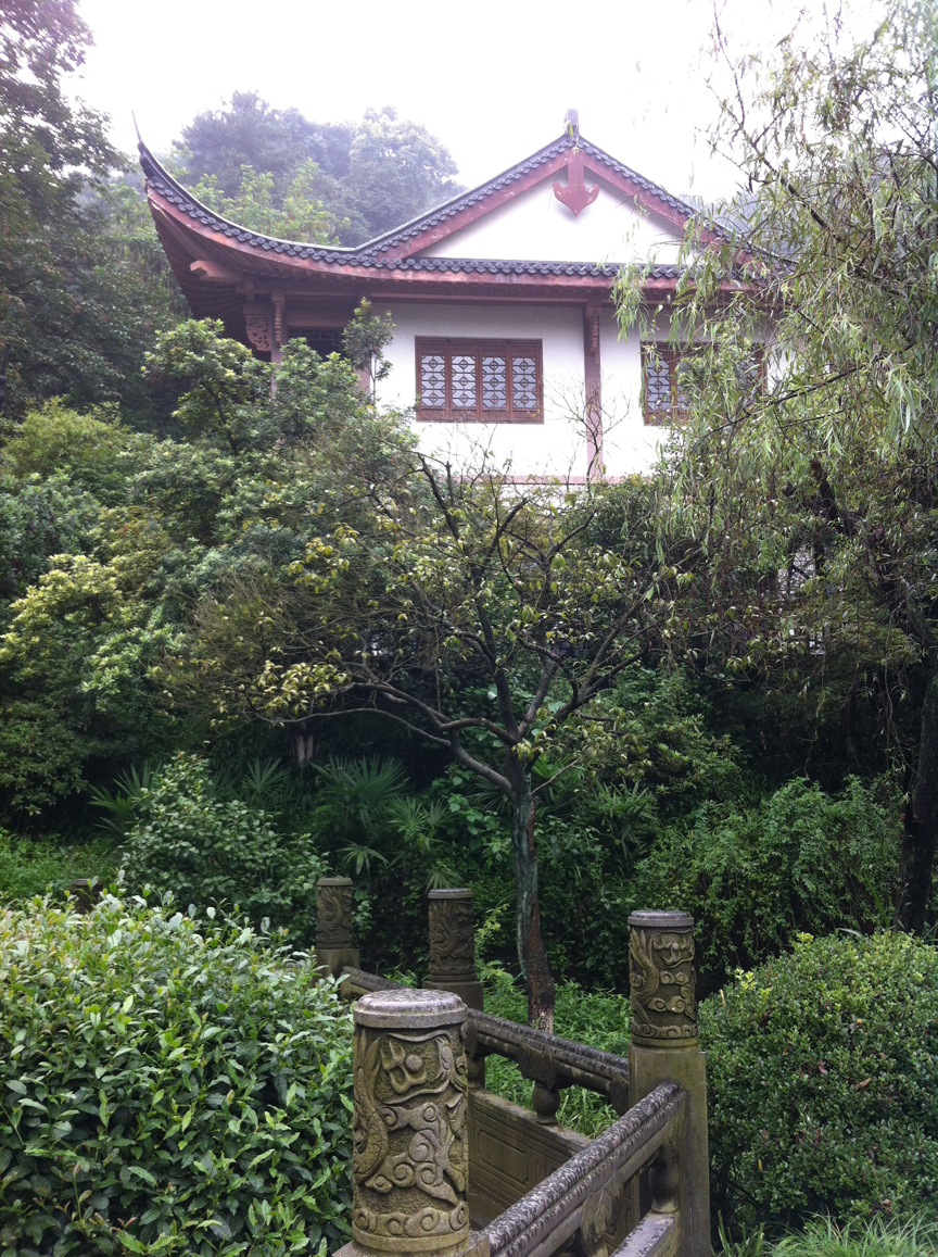 Longjing (Dragon Well) Tea Garden