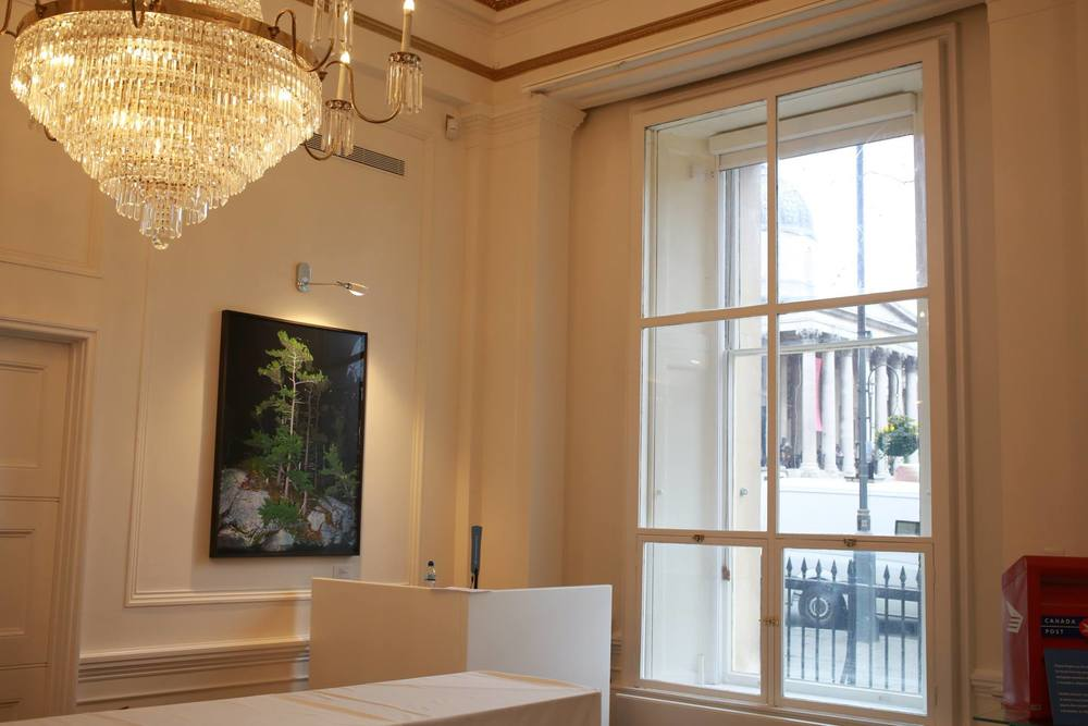 Whites Pines, 2011 & Go Home Bay, 2011 (not pictured), permanently installed at Canada's High Commission in London. (National Gallery through the window)